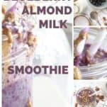 Blueberry Almond Milk Smoothie