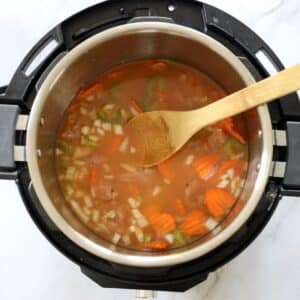 chicken stock for turkey soup ingredients in instant pot