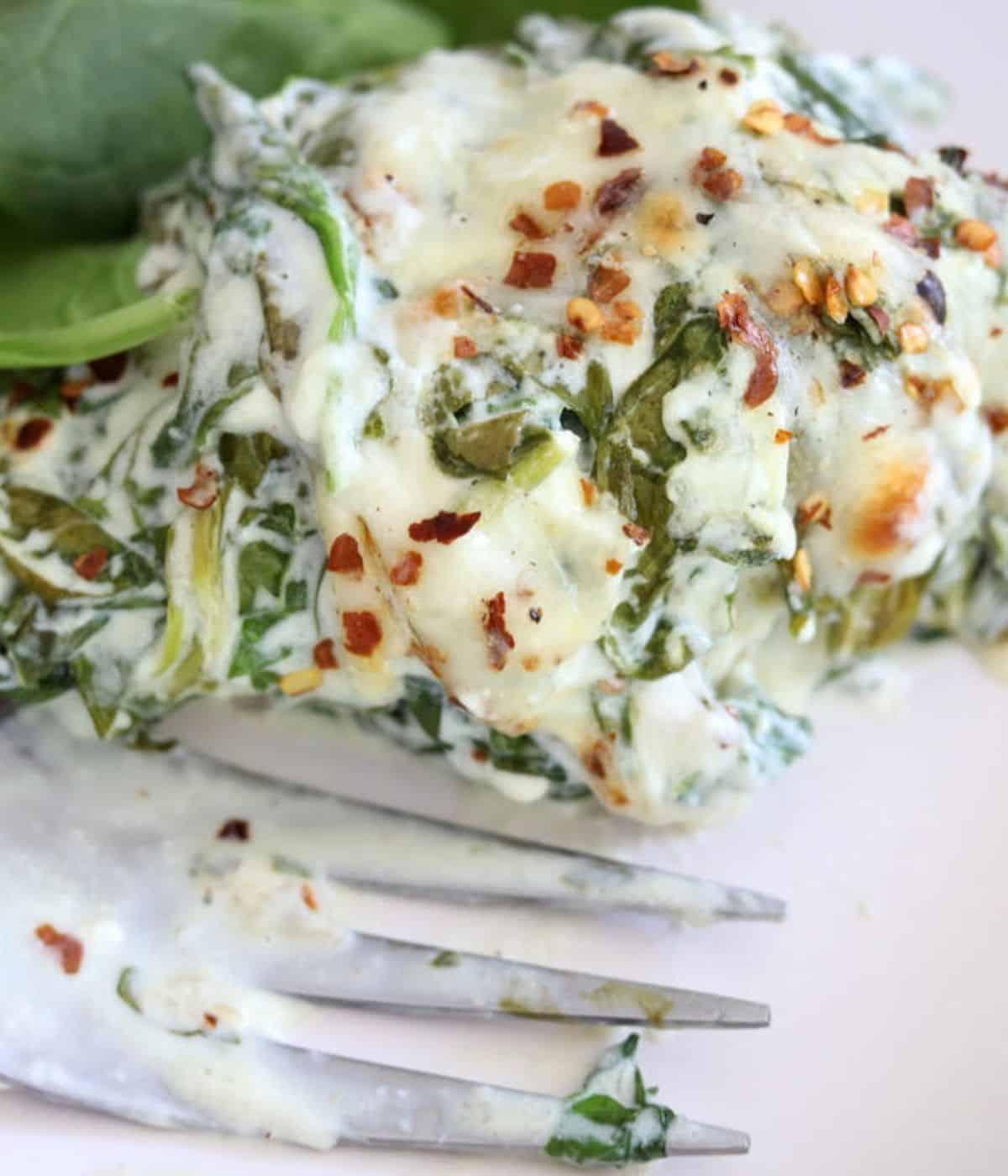 creamy chicken spinach dish