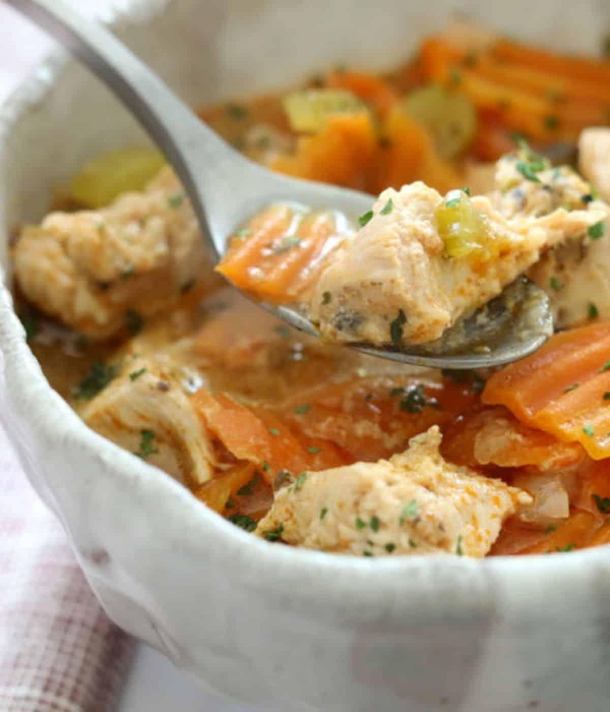 spoonful of turkey soup