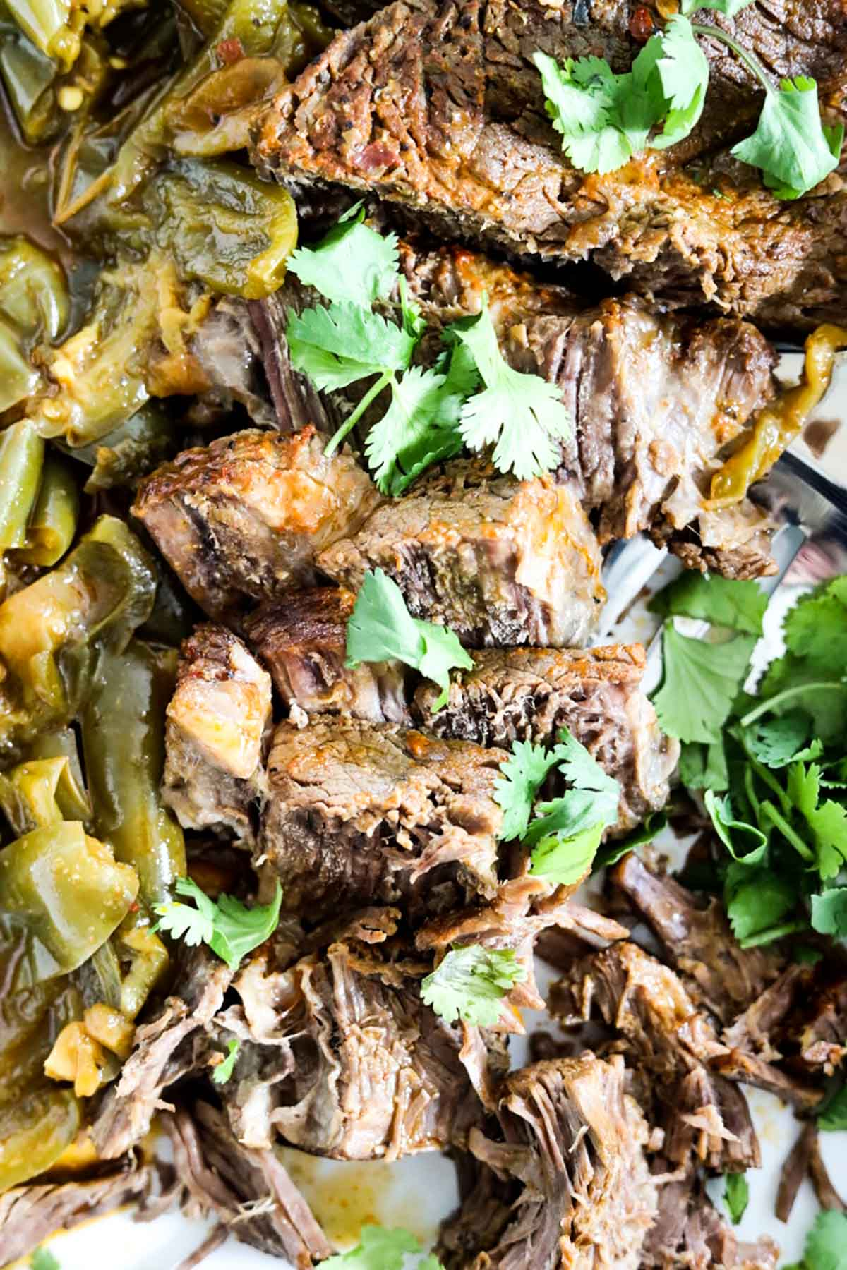 beef carne asada skirt steak with cilantro and jalapeno topping